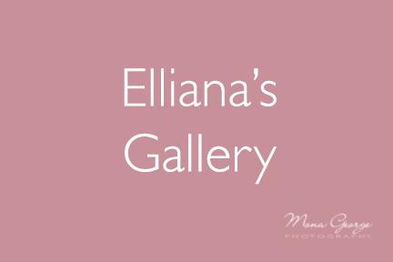 Elliana's Gallery