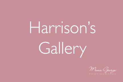 Harrison's Gallery