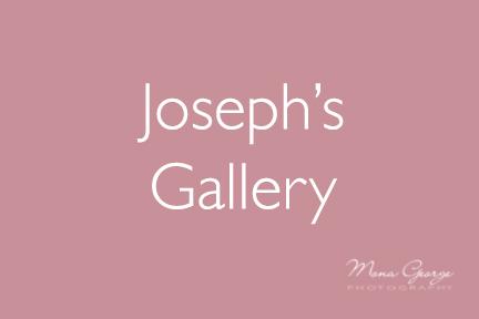 Joseph's Gallery