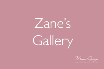 Zane's Gallery
