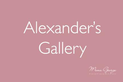 Alexander's Gallery