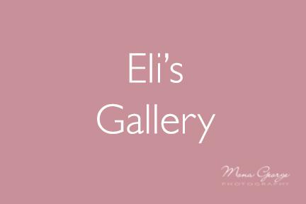 Eli's Gallery