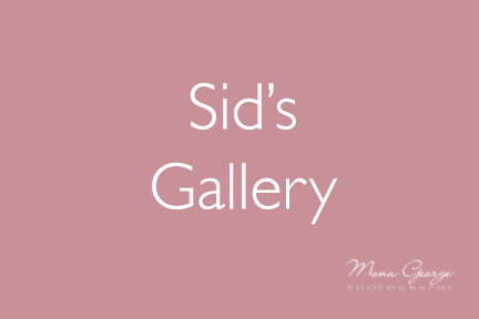 Sid's Gallery