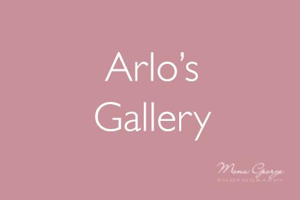 Arlo's Gallery