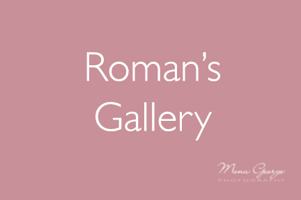 Roman's Gallery