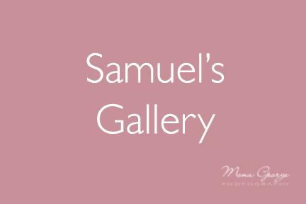 Samuel's Gallery